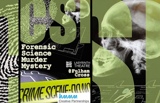 Forensic Science Murder Mystery | A New Direction